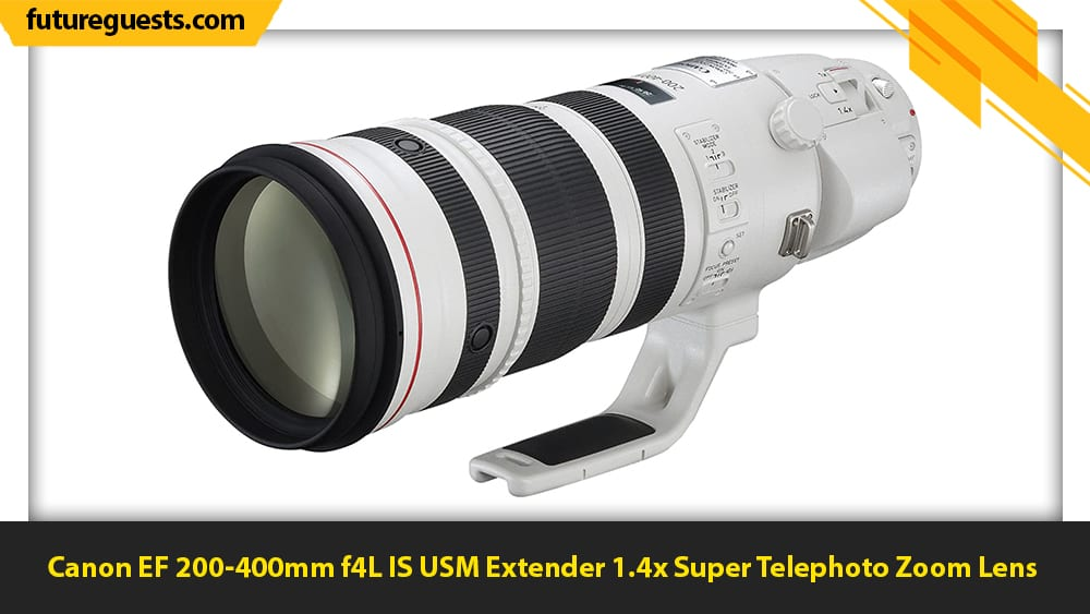 best lenses for wildlife photography Canon EF 200-400mm f4L IS USM Extender 1.4x Super Telephoto Zoom Lens