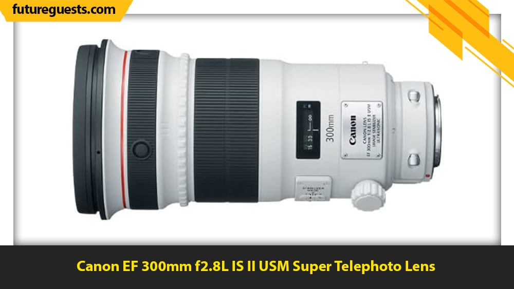 best lenses for wildlife photography Canon EF 300mm f2.8L IS II USM Super Telephoto Lens