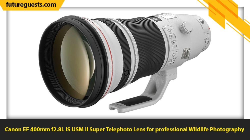 best lenses for wildlife photography Canon EF 400mm f2.8L IS USM II Super Telephoto Lens