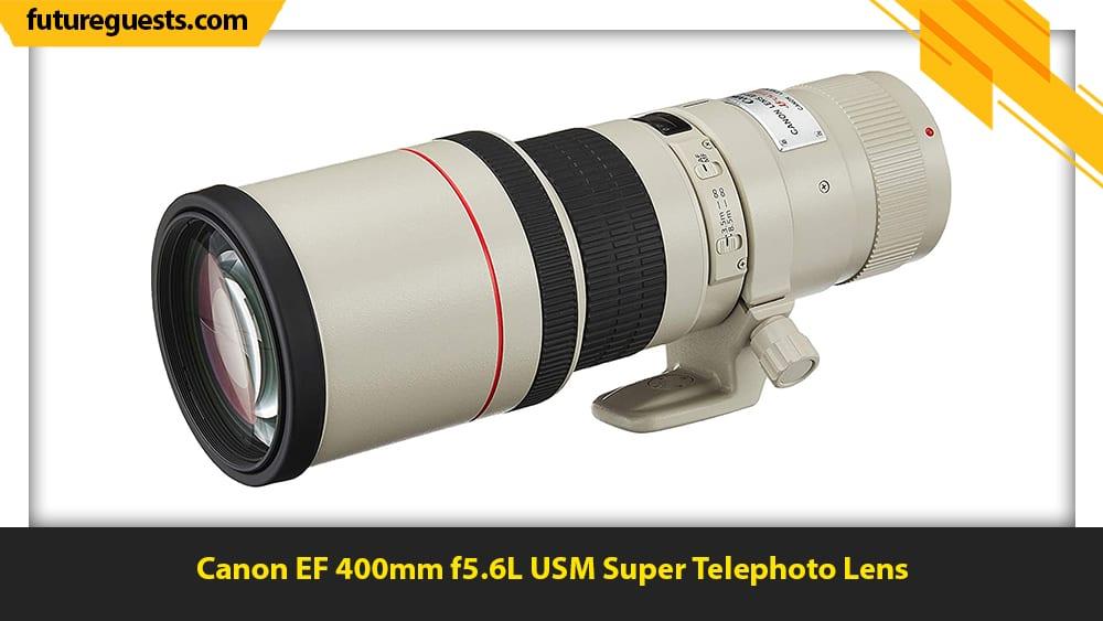 best lenses for wildlife photography Canon EF 400mm f5.6L USM Super Telephoto Lens
