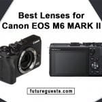 Best Lenses for Canon EOS M6 Mark II: Reviews & Buyers Guide
