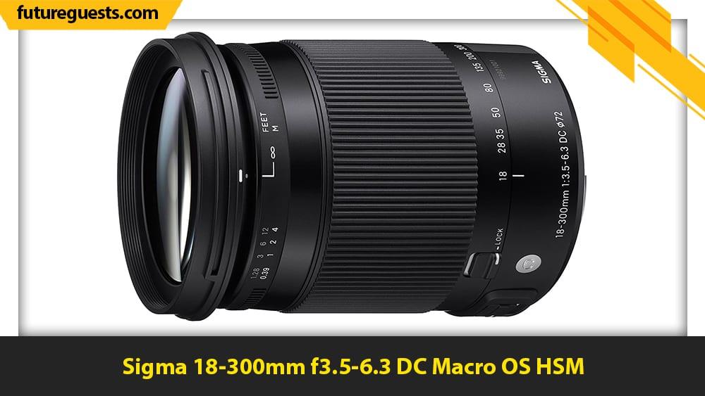 best lenses for nikon d3100 Sigma 18-300mm f3.5-6.3 DC Macro OS HSM