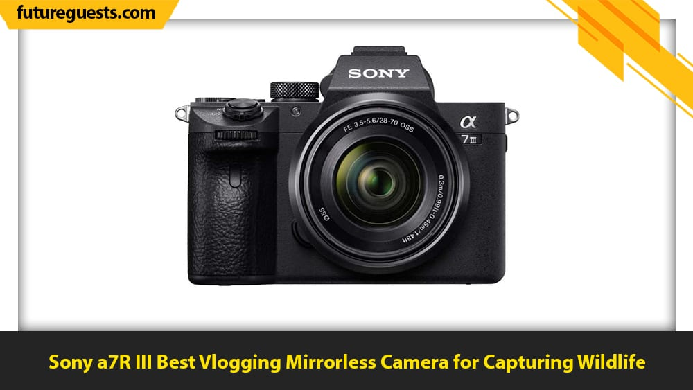 best mirrorless cameras for vlogging Sony a7R III