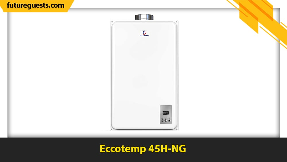 best outdoor tankless water heaters Eccotemp 45H-NG