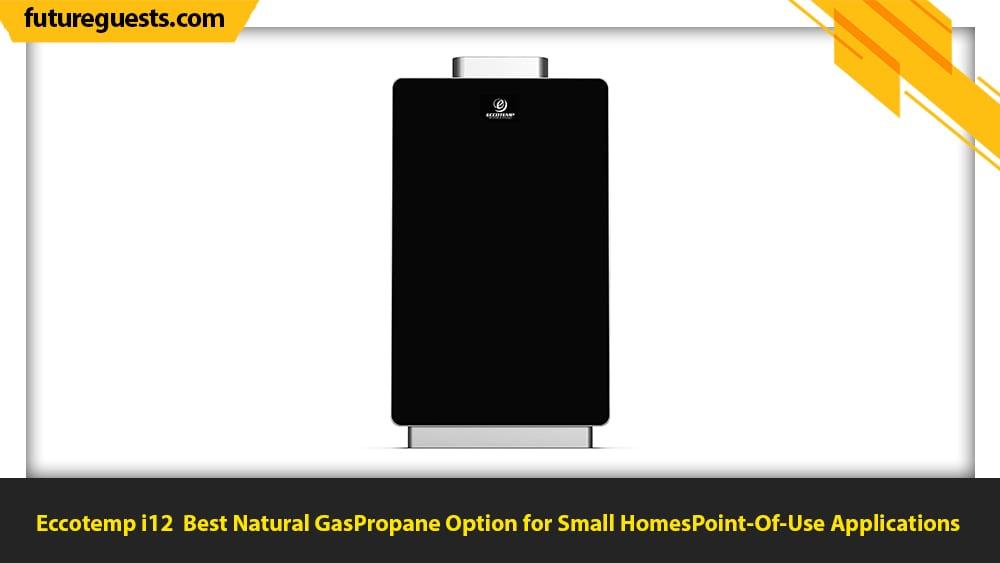 best indoor tankless water heater Eccotemp i12