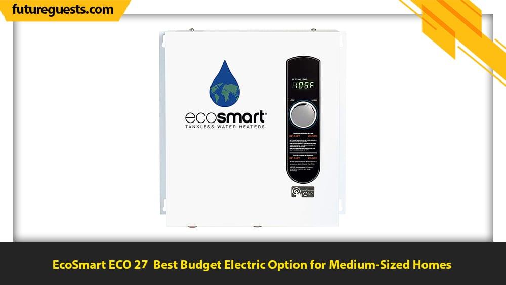 best indoor tankless water heater EcoSmart ECO 27