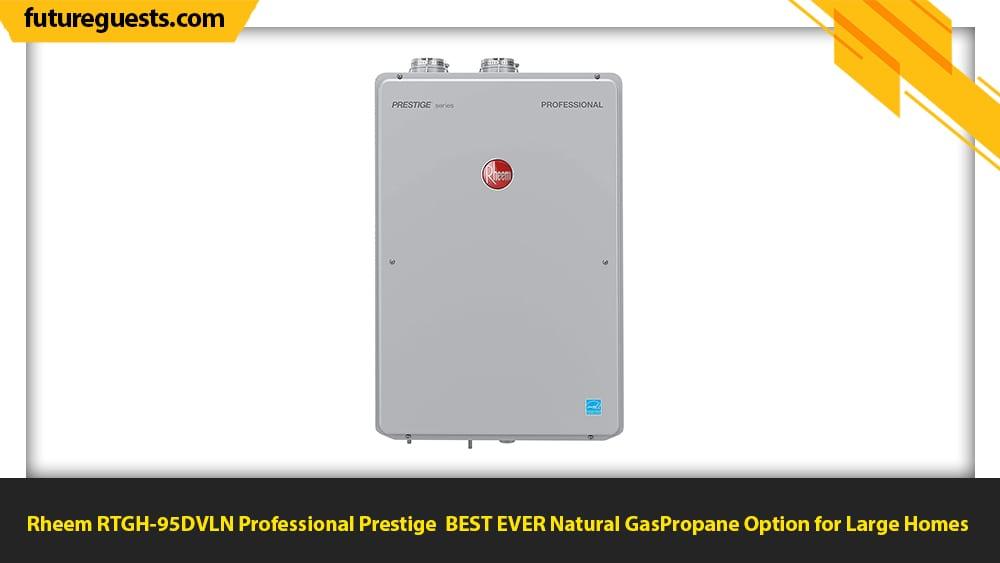 best indoor tankless water heater Rheem RTGH-95DVLN Professional Prestige