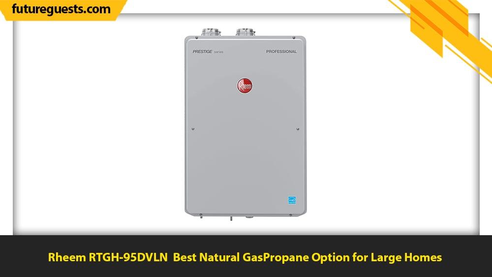 best indoor tankless water heater Rheem RTGH-95DVLN
