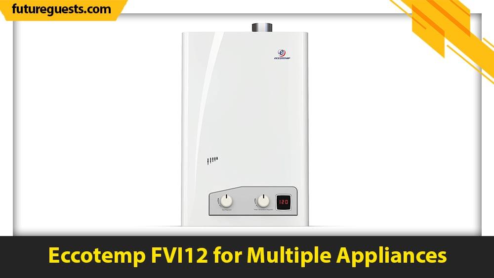 best small tankless water heater Eccotemp FVI12